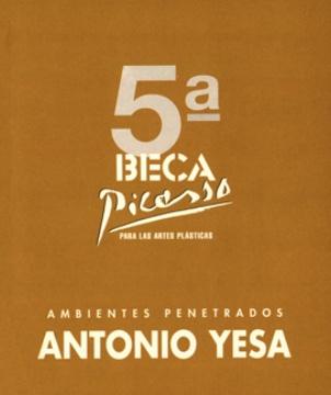 5ª BECA PICASSO PARA LAS ARTESPLÁSTICAS (ANTONIO YESA AMBIENTES PENETRADOS)